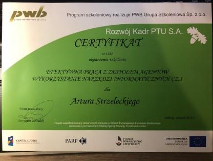 certyfikat41orig